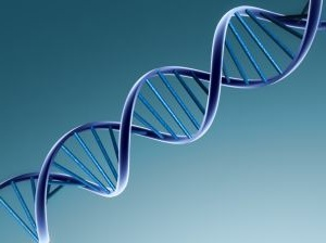 Genetic Biomarkers May Help in Early Diagnosis of Type 2 Diabetes