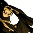 Pirates Still A Modern Day Threat